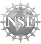 Nsf 3057519ffec07f4cb66b80adc627bd817b51de7b61fbba8e68696d545f1135eb
